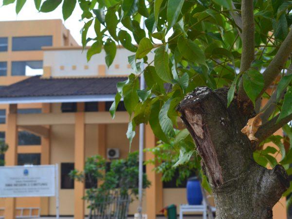 Gedung - gedung di SMAN 2 Cibitung